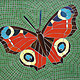 Mosspits Primary School Mosaics, 2014 - One Butterfly